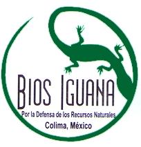 Logo Bios Iguana